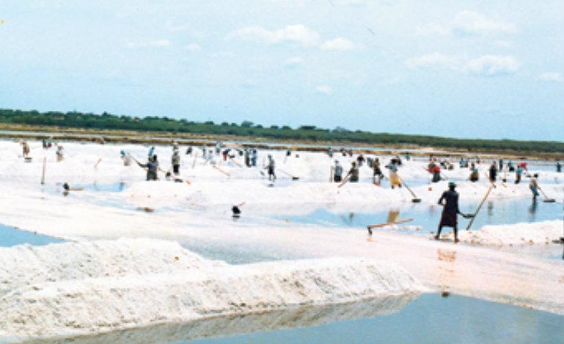hambantota-srilanka-ecotreat