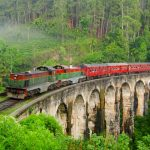 train-tour-srilanka-eco-treat