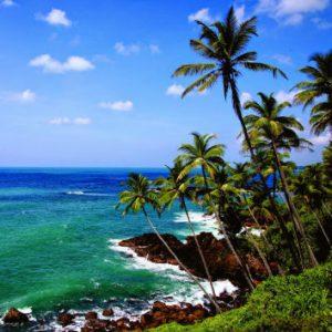 beach-srilanka-eco-treat