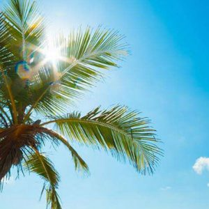 eco-treat-shop-beach
