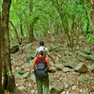 ecotourism-srilanka-eco-treat