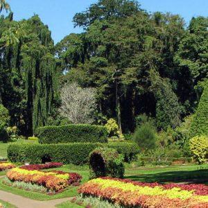garden-city-sri-lanka-eco-treat