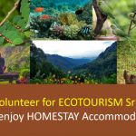 Homestay Sri Lanka as a Volunteer