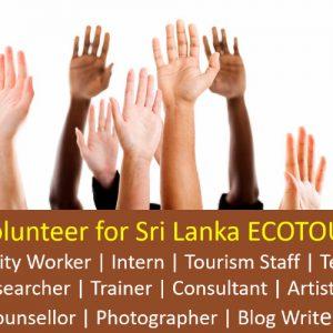 Sri Lanka ECOTOURSIM Volunteer