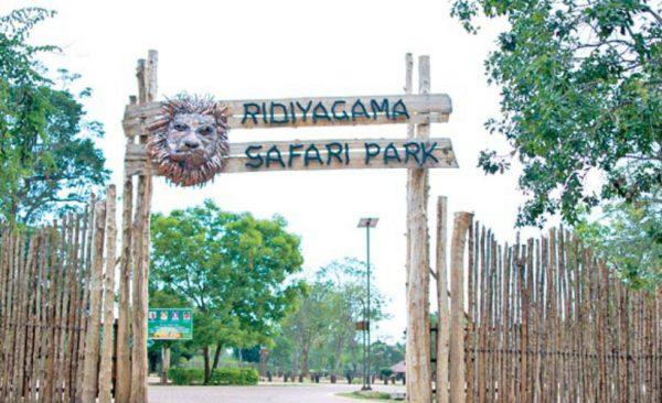 hambantota-safari-park-ecotreat