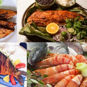 sea-fish-tour-srilanka-eco-treat