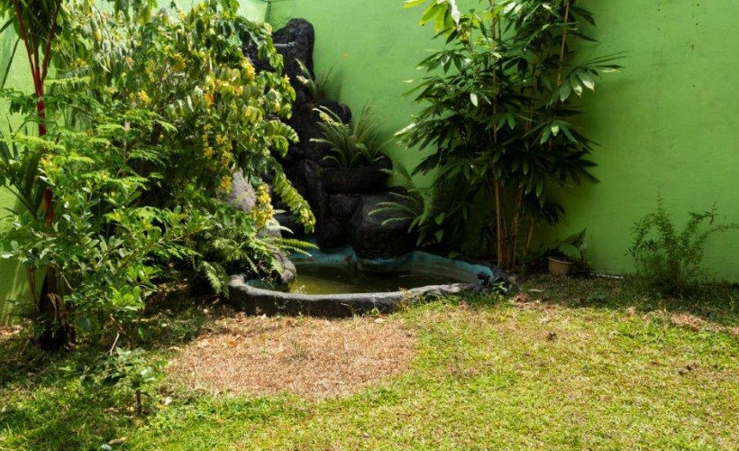 Colombo-srilanka-eco-treat-homestay-apartment-garden