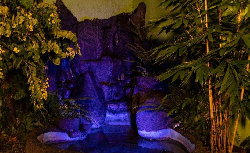 Colombo-srilanka-eco-treat-homestay-apartment-garden-night