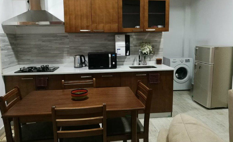 Colombo-srilanka-eco-treat-homestay-apartment-smart-washing-refrigirator
